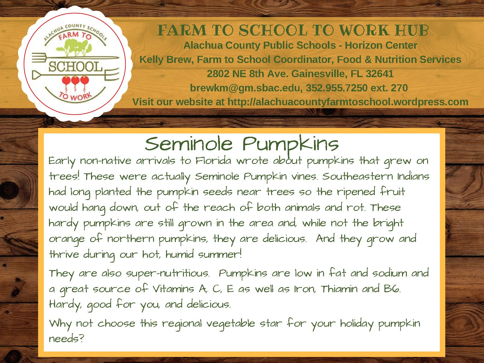Seminole Pumpkins: Early non-native arrivals to Florida wrote about pumpkins. that grew on trees! These were actually Seminole Pumpkin vines. Southeastern Indians had long planted the pumpkin seeds near trees so the ripened fruit would hang down, out of reach of both animals and rot. These hardy pumpkins are still grown in the area and, while not the bright orange fo northern pumpkins, they are delicious. And they grow and thrive during our hot, humid summer! They are also super-nutritious. Pumpkins are low in fat and sodium and a great source of Vitamins A,C, E as well as iron, thiamin, and B6. Hardy, good for you, and delicious. Why not choose this regional vegetable star for your holiday pumpkin needs?