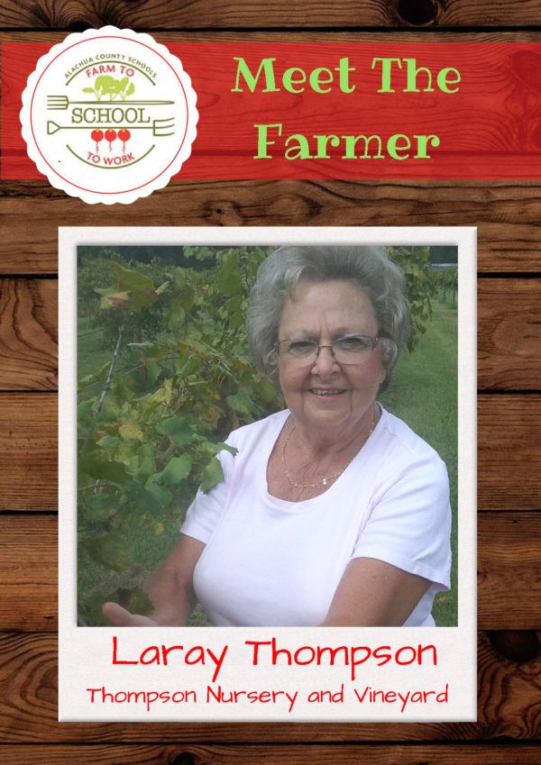 Meet the Farmer: Laray Thompson (Thompson Nursery and Vineyard)
