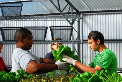 Students learning in the Farm to School to Work Hub