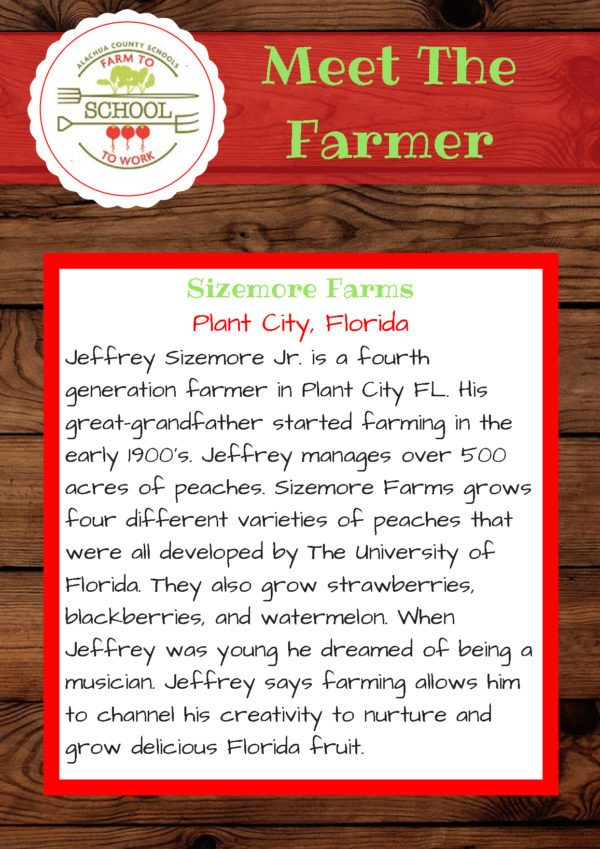 Meet the Farmer from Sizemore Farms (Plant City, FL): Jeffrey Sizemore, Jr. is a fourth-generation farmer in Plant City, FL. His great grandfather started farming in the early 1900s. Jeffrey manages over 500 acres of peaches. Sizemore Farms grows four different varieties of peaches that were all developed by the University of Florida. They also grow strawberries, blackberries, and watermelon. when Jeffrey was young, he dreamed of being a musician. Jeffrey says farming allows him to channel his creativity to nurture and grow delicious Florida fruit.