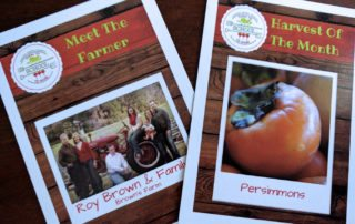 Harvest of the Month: Persimmons