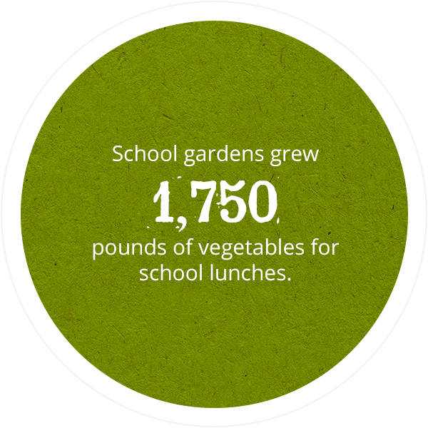 School gardens grew 1,750 pounds of vegetables for school lunches.
