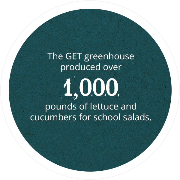 The GET greenhouse produced over 1,000 pounds of lettuce and cucumbers for school salads.
