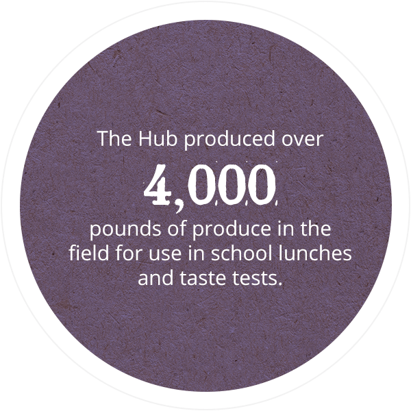 The Hub produced over 4,000 pounds of produce in the field for use in school lunches and taste tests.
