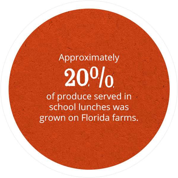 Approximately 20% of produce served in school lunches was grown on Florida Farms.