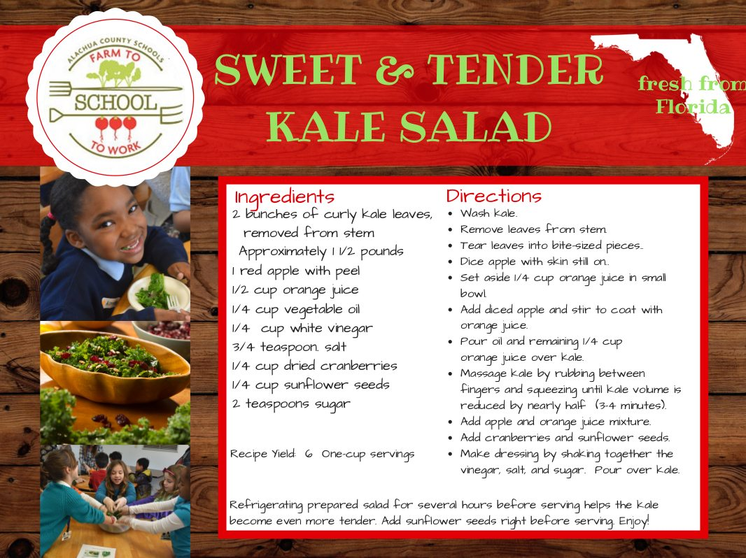 Sweet & Tender Kale Salad Recipe, Ingredients: 2 bunches of curly kale leaves (removed from stem and approximately 1.5 pounds), 1 red apple with peel, 1/2 cup orange juice, 1/4 cup vegetable oil, 1/4 cup white vinegar, 3/4 teaspoon salt, 1/4 cup dried cranberries, 1/4 cup sunflower seeds, 2 teaspoons sugar. Directions: Wash kale. Remove leaves from stems. Tear leaves into bite-sized pieces. Dice apple with skin still on. Set aside 1/4 cup orange juice in small bowl. Add diced apple and stir to coat with orange juice. Pour oil and remaining 1/4 cup orange juice over kale. Massage kale by rubbing between fingers and squeezing until kale volume is reduced by nearly half (3-4 minutes). Add apple and orange juice mixture. Add cranberries and sunflower seeds. Make dressing by shaking together the vinegar, salt, and sugar. Pour the dressing over kale. This recipe yields 6 one-cup servings. Note; Refrigerating prepared salad for several hours before serving helps the kale become even more tender. Add sunflower seeds right before serving. Enjoy!