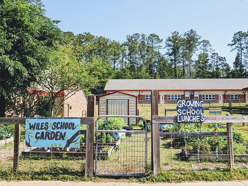 Wiles Elementary