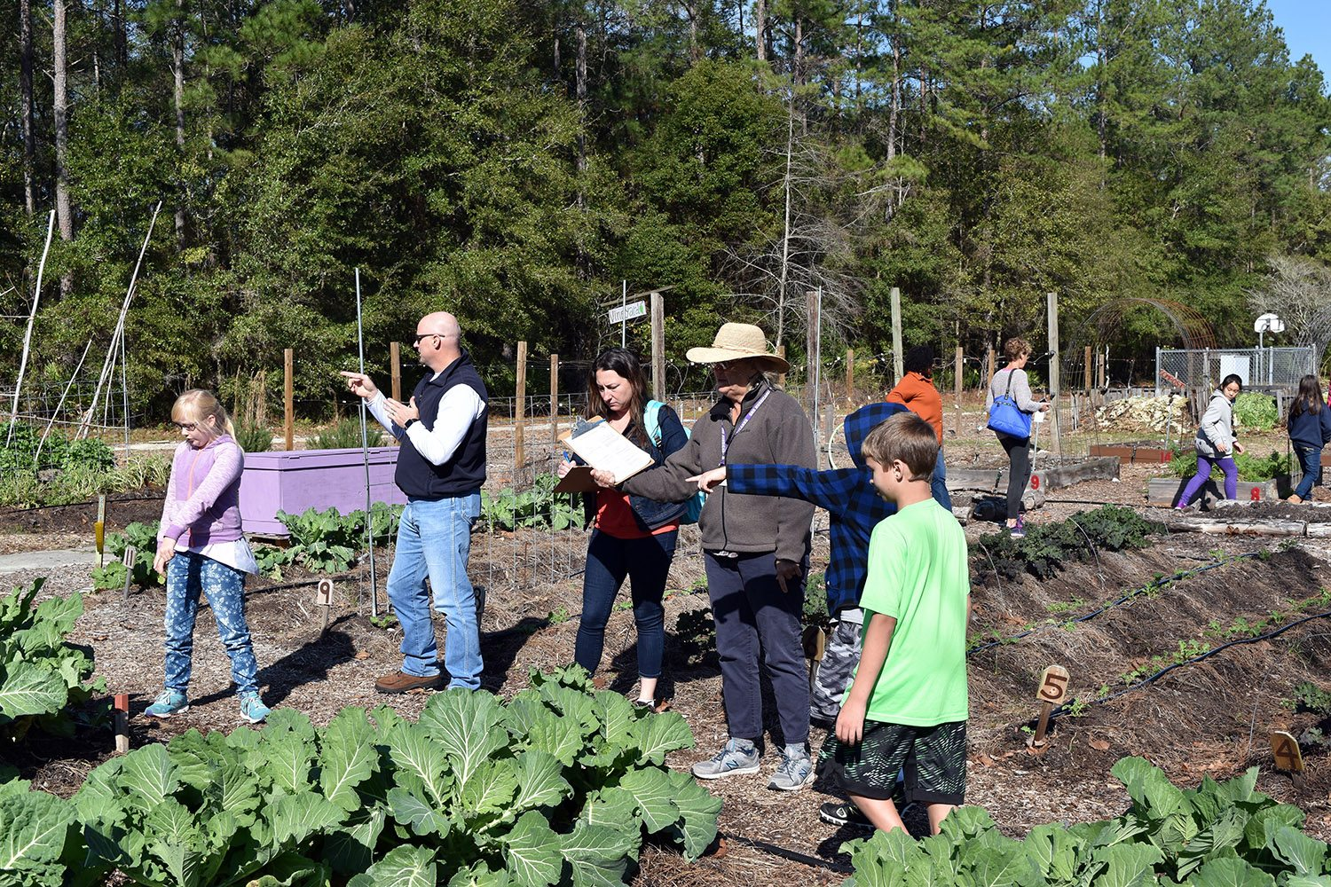 Kids go on a scavenger hunt in a vegetable garden.
