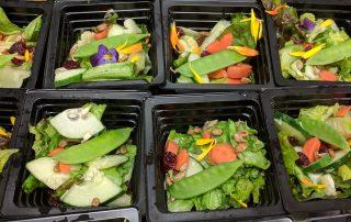 school garden salad